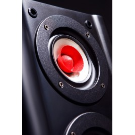 TUOLIHAO Q5 full frequency HIFI tube amp bookshelf speakers
