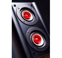 TUOLIHAO Q5 full frequency HIFI tube amp bookshelf speakers