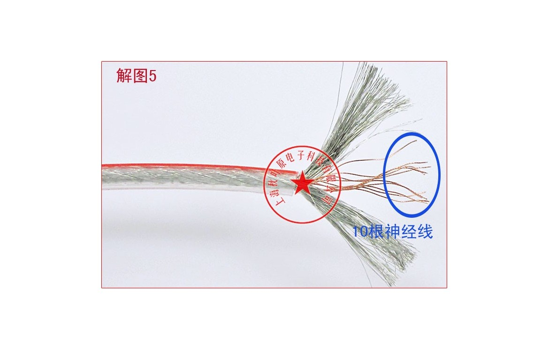 Choseal Akihabara Yf 2164 Hifi Exquis Ofc Copper Audio